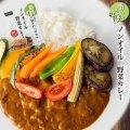 レトルトカレー ノンオイル野菜カレー180g  脂質ゼロなのに旨みたっぷり!脂質ゼロ食品 インスタントカレー 即席カレー ダイエット