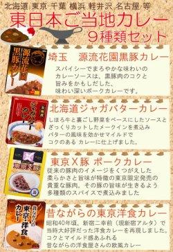画像2: 東日本 ご当地 レトルトカレー 9種類セット 名物カレー レトルトカレー ご当地カレー お土産 非常食 保存食 ギフト 景品 イベント 御中元 お歳暮 父の日
