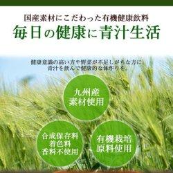画像2: 九州産 有機野菜青汁 3gX15包入 JA全農 大麦若葉 明日葉 桑葉 野菜不足 ドリンク 国産